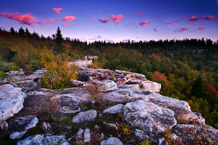 Dolly Sods Joseph Rossbach Photography