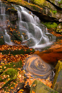 Swirling Leaves below Second Falls of Shays Run, Blackwater Falls State Park, West Virginia
