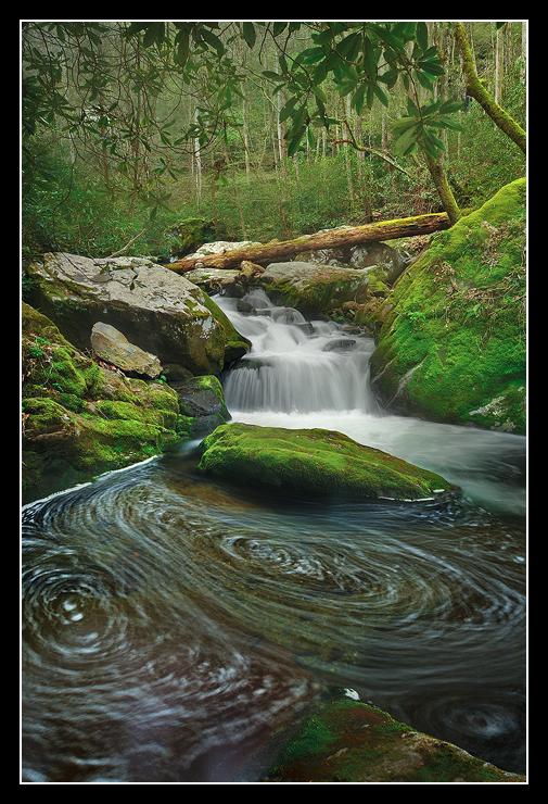 """""""Swirling Fork Falls"""""""