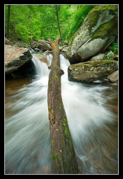 Fallen Oak Falls