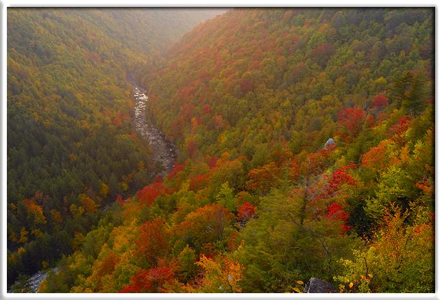 West virginia autumn color photo workshop joseph for West fall